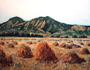 Boulder Flatirons with Hay Bales