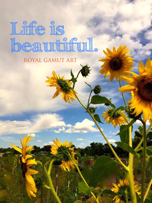 Life is Beautiful Sunflower photo
