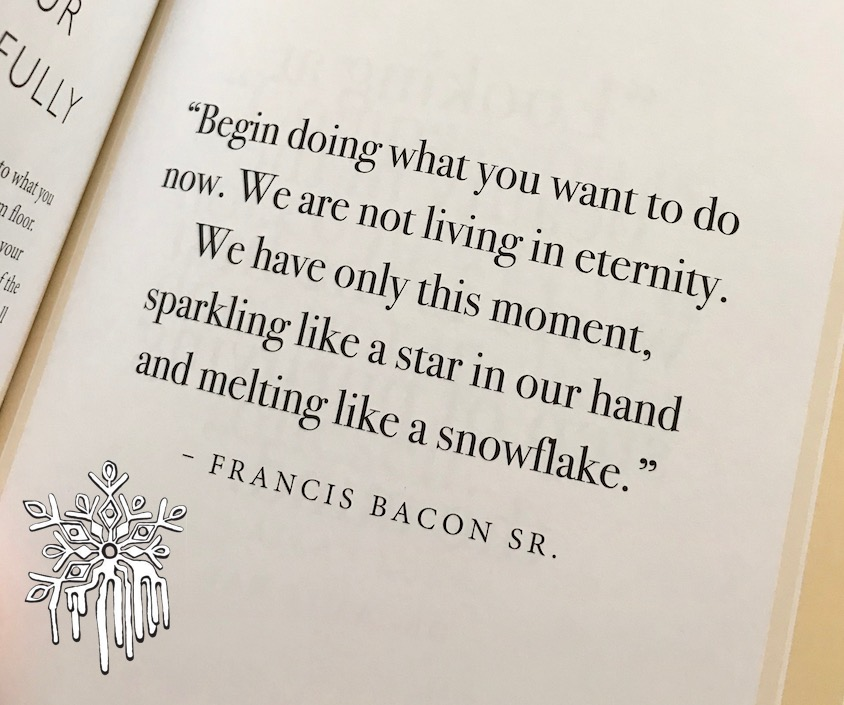 quote by francis bacon sr