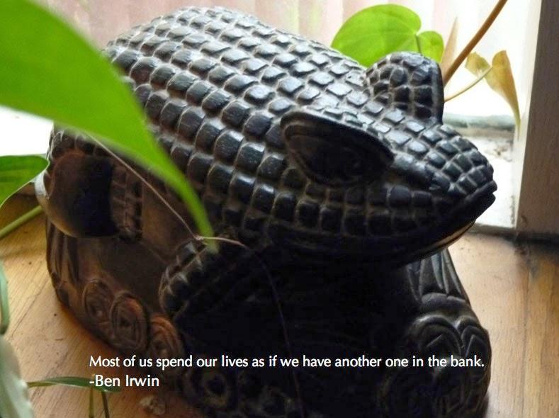 Abundance Frog Royal Gamut Art