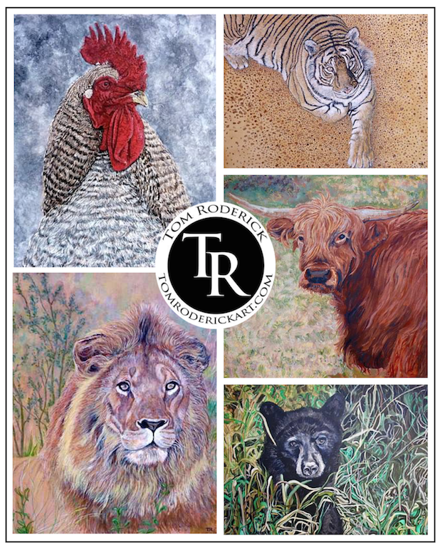 Animal portraits by Boulder artist Tom Roderick.