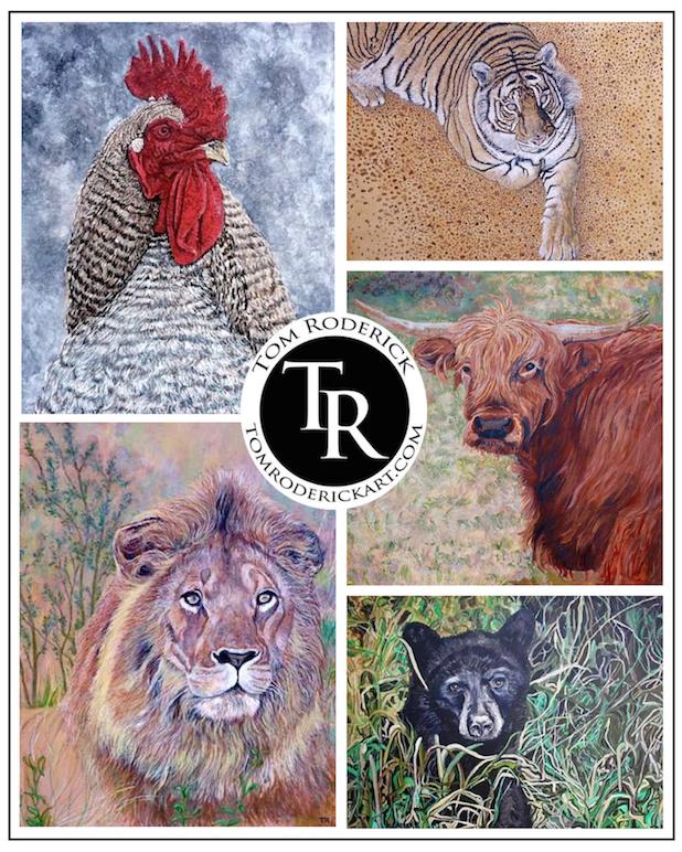 Animal portraits by Boulder artist Tom Roderick.
