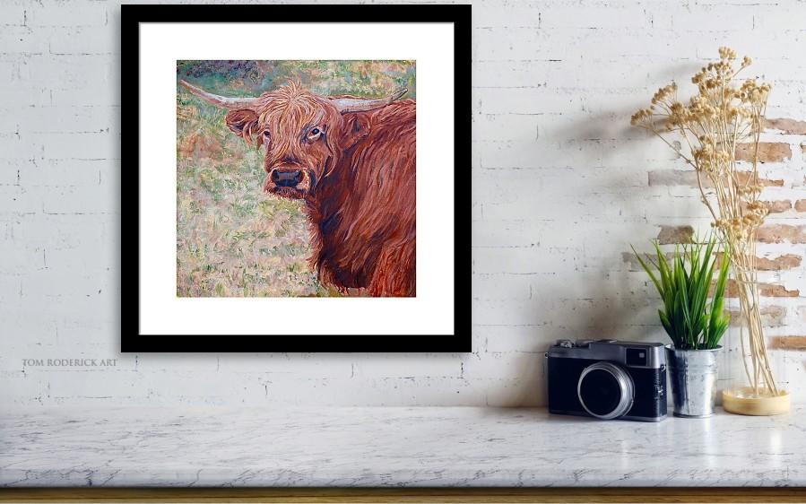 Framed print of Wink the Highland Cow by Boulder artist Tom Roderick.