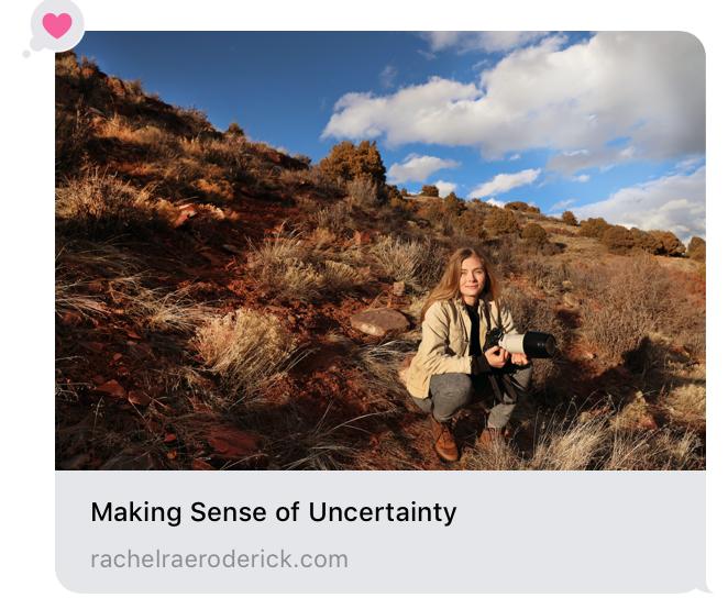 Making Sense of Uncertainty by Rachel Rae Roderick.