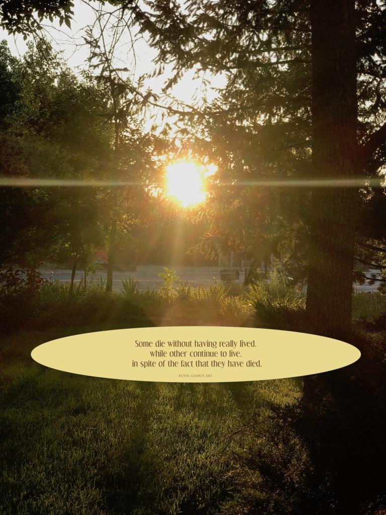 sunrise quote royal gamut art