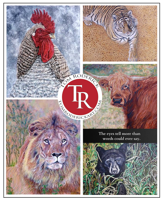 Animal Artwork by Boulder artist Tom Roderick.